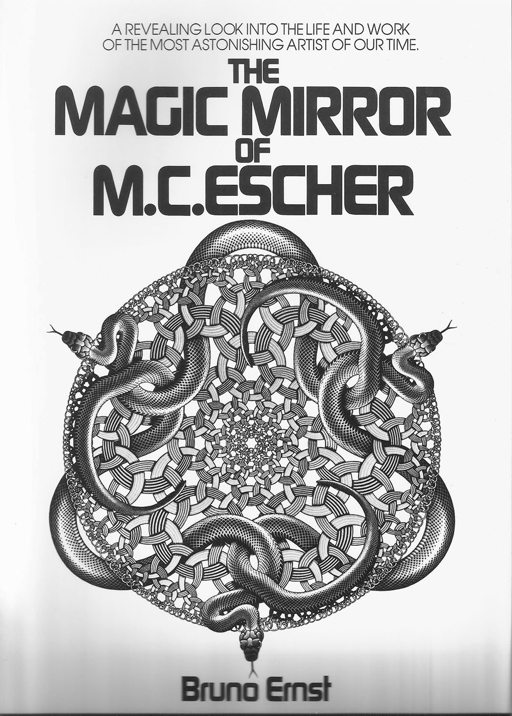 Magic mirror software