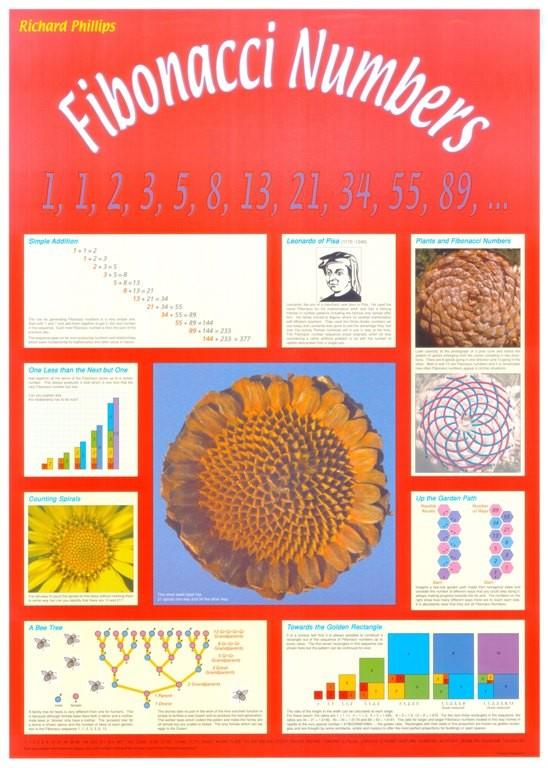 Fibonacci Numbers Poster
