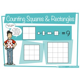 Counting Squares and Rectangles Poster