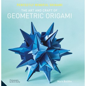 The Art and Craft of Geometrical Origami